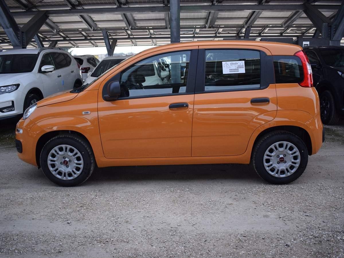 FIAT Panda 1.2 Easy Arancio Sicilia Km 0 0000VBX-G