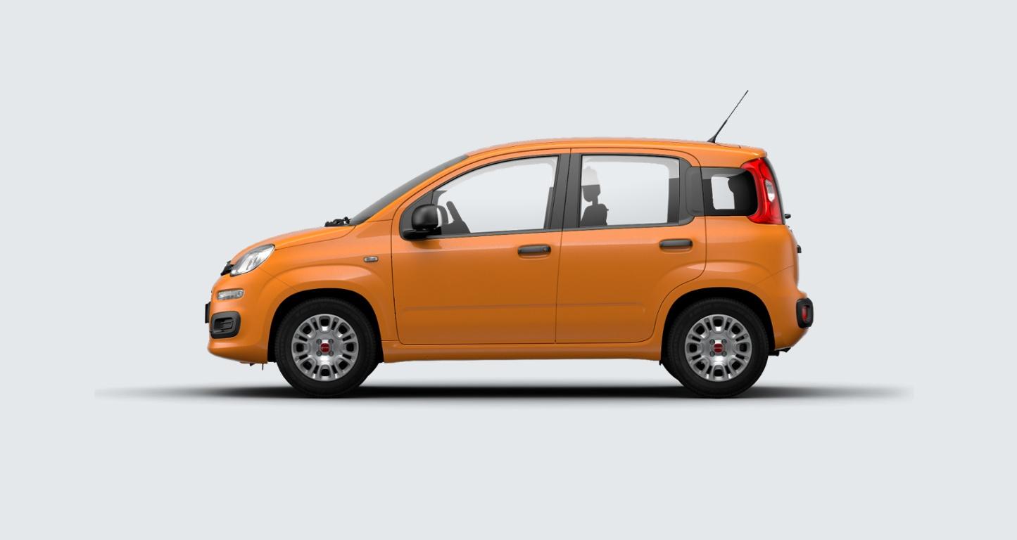 FIAT Panda 1.2 Easy Arancio Sicilia Km 0 A3U0U3A-b
