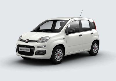 FIAT Panda 1.2 Easy Bianco Gelato Km 0