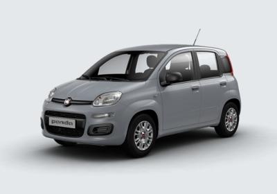 FIAT Panda 1.2 Easy Grigio Moda Km 0