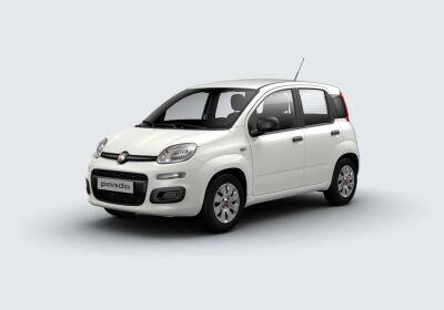 FIAT Panda 1.2 Pop Bianco Gelato Km 0