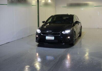 KIA Proceed 1.6 crdi GT Line Adas Pack 136cv dct Black Usato Garantito