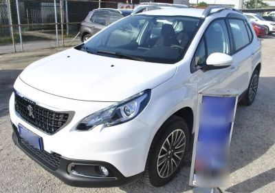 PEUGEOT 2008 PureTech Turbo 110 S&S Active Bianco Banchisa Km 0