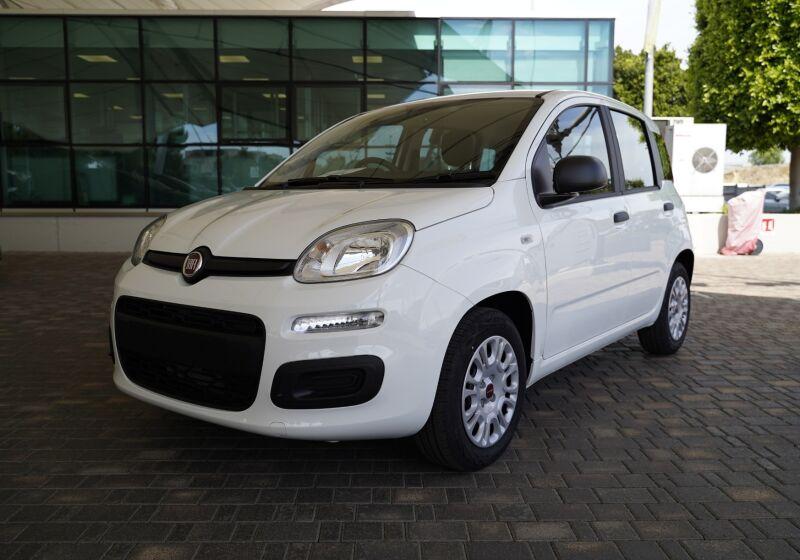 FIAT Panda 1.0 hybrid Easy s&s 70cv Bianco Gelato Km 0 8V0CCV8-1-v1