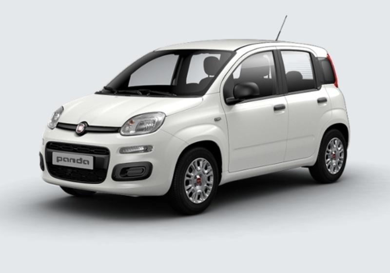 FIAT Panda 1.2 Easy Bianco Gelato Km 0 3EU0UE3-a
