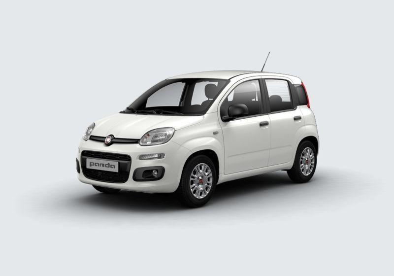 FIAT Panda 1.2 Easy Bianco Gelato Km 0 GL0BFLG-40388_esterno_lato_1